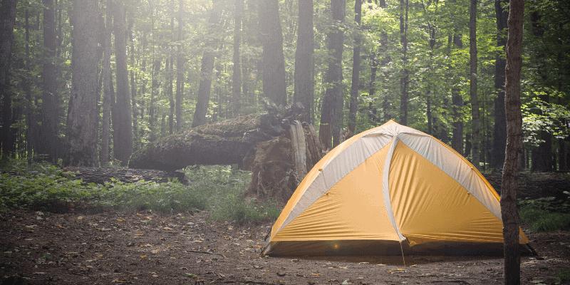 tent under 100
